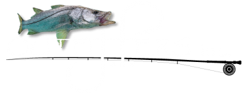 JP Outfitters Inc